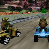 Ninja Turtles Race 3D